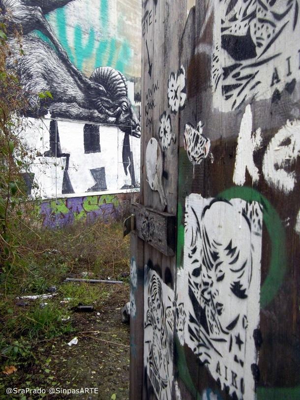 """Roa """"Graffiti y Muralismo"""""""