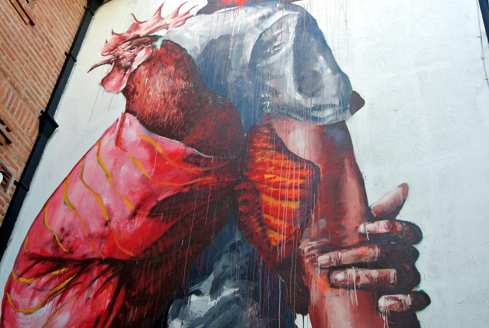 Fintan Magee mural en Buenos Aires