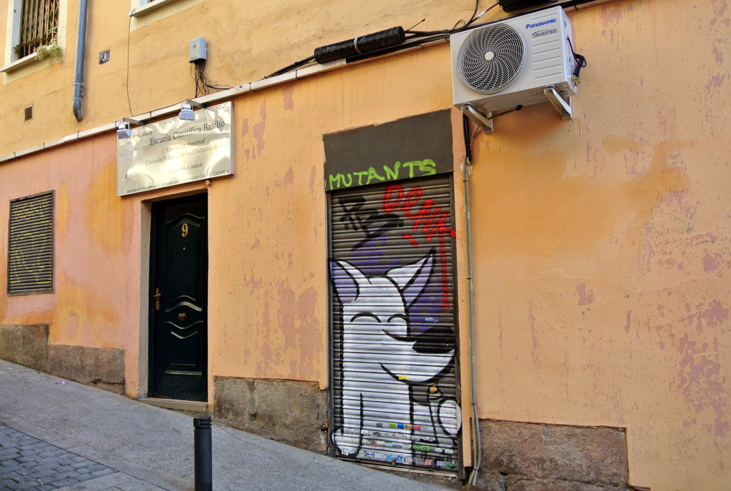 SinPasarte-StreetArt-Dingo-007